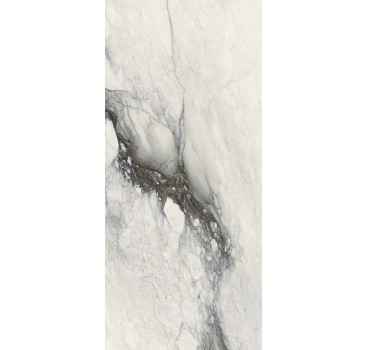ETOILE RENOIR GLOSSY 60x120 RET
